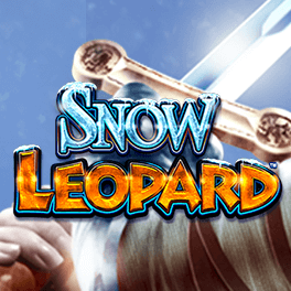 Login or Register to play Snow Leopard