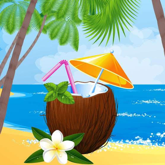 Paradise Reels