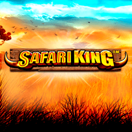 Login or Register to play Safari King