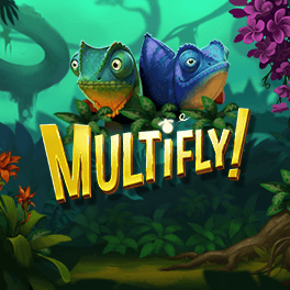 Login or Register to play MULTIFLY!