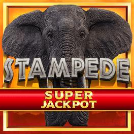 Login or Register to play Stampede Jackpot
