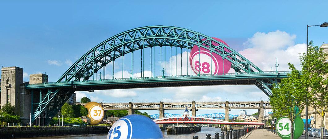 wink bingo Newcastle 4TOON
