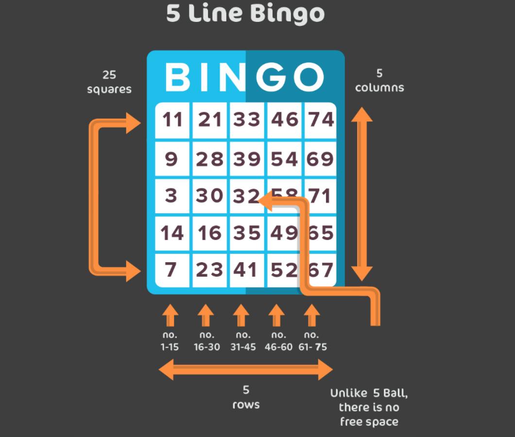 5 line bingo image1