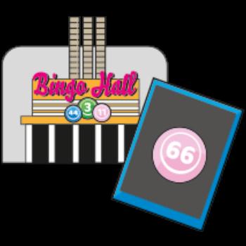 bingo introduction